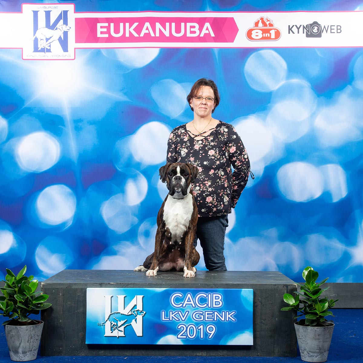 Hanuta erfolgreich in Genk
