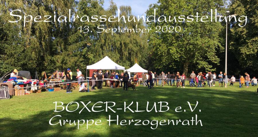 Spezialrassehundeausstellung in Herzogenrath am 13.09.2020